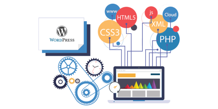 wordpress-development 5